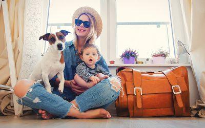Met je huisdier naar Spanje reizen?