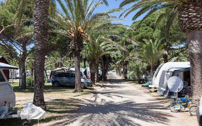 Aantal Nederlandse en Belgische campinggasten in Spanje